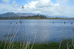 Nehalem River Tour