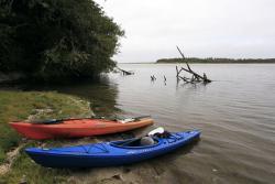 Nestucca Bay
