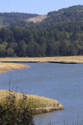 Siletz Wildlife Refuge